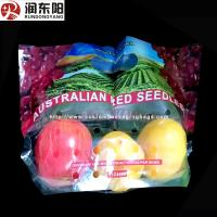 China Stand Up Fruit Packaging Bags PE Laminated Punch Zipper Lock Moisture Proof on sale