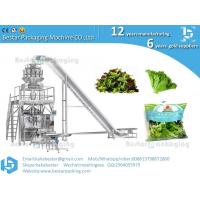 Wholesale How to make the fresh vegetable salad from washing,slicing,drying and packing machine from china suppliers