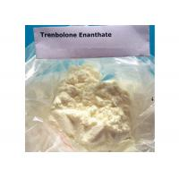 Wholesale High Purity Tren Bodybuilding Supplement , Trenbolone Enanthate Powder from china suppliers