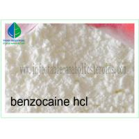 Buy cheap Local Anesthetic Agent Benzocaine Hydrochloride / Benzocaine HCl 23239-88-5 from wholesalers
