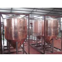 Wholesale Professional Copper Mirror Small Beer Brewing Systems , Nano Brewery Equipment from china suppliers