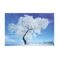 Wholesale 0.6mm PET 40*60cm 3D Lenticular Poster / 3D Depth Effect Lenticular Landscape Poster from china suppliers