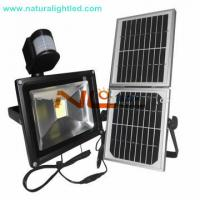 Quality solar led lighting with microwave motion sensor for sale