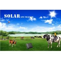 Wholesale Sim card gps solar tracking system with free software mini gps tracker waterproof for cow/ from china suppliers