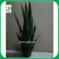 Uvg plt05 cheap artificial plants indoor century plant for Artificial plants indoor decoration