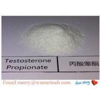 Wholesale Pharmaceutical Testosterone Propionate Powder For Body Building Raw Steroid Powders from china suppliers