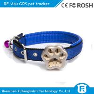 China Rf-v30 worlds smallest diy pet dog collars smart gps tracker on sale