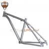 Buy cheap Titanium Hardtail 29er Mountain Bike Frame Dropout Thru Axle Hanger Post Mount from wholesalers