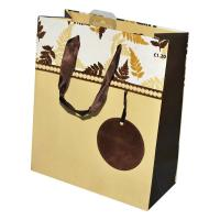 Wholesale shopping paper bag from china suppliers