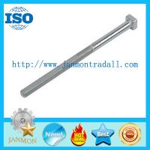 Stainless steel 304 T head bolt,SS 304 T head bolt,Steel T bolts,Carbon steel Zinc T bolt,Black T bolt grade 8.8 10.9