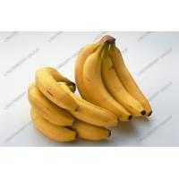 Wholesale Banana juice powder from china suppliers