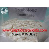 Yellow Synthetic Trenbolone Enanthate Tren Enan Tren E Lean Muscle Building Steroids