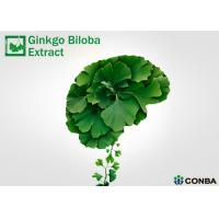 Wholesale EP9.0 Ginkgo Biloba Extract With Advanced Extraction Technology from china suppliers