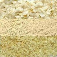 Wholesale For sale Dried Garlic Flakes Global Foods Dry garlic dehydrated garlic Flakes from china suppliers
