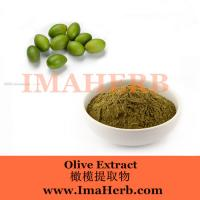 China Factory Supply Best price olive leaf extract / oleuropein 25%  Felicia@imaherb.com on sale