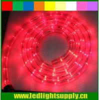China outdoor christmas rope light 12/24v 1/2'' 2 wire led rope lights on sale