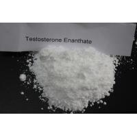 Wholesale High Purity Oral Anabolic Steroids Testosterone Enanthate CAS 315-37-7 from china suppliers