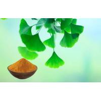 Wholesale Pharmaceutical Grade Ginkgo Biloba Extract With Food Grade Ethanol Extraction from china suppliers