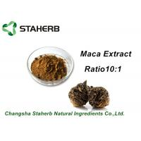 Wholesale Medical Herbal Extract Ratios Maca Root Extract Powder 4:1 For Male Health Care Product from china suppliers