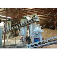 Eucalyptus biomass pellet production line wood