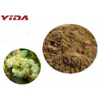Quality YIDA GMP Certification Dodder Seed Extract Powder Remedy Sexual Problems for sale