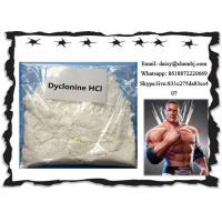 Wholesale Oral Local Anesthetic Drugs Dyclonine Hydrochloride / Procainamide HCl CAS 536-43-6 from china suppliers