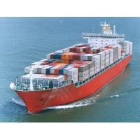 Wholesale Shenzhen To ORLANDO Shipping Forwarder , FL International Sea Routes / Ocean Freight Logistics from china suppliers