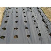 China Outdoor Agriculture Black Garden Weed Mat , Weed Stop Garden Fabric For Raised Bed on sale