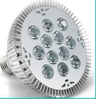 Wholesale LED spot light Features 4000-5000K for Exhibition room , Gallery , Museum from china suppliers