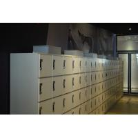 Wholesale Wear Resistant 5 Tier Lockers With Special Lock , Easy Install Intelligent Locker Systems from china suppliers