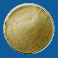 Wholesale D-Glutamic acid,amino acid from china suppliers