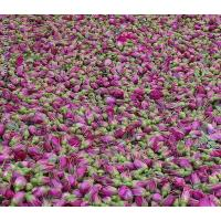 Wholesale Gansu excellent products Kushui Rosebud from china suppliers