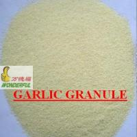 Wholesale Organic Garlic Granules from china suppliers