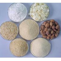 Wholesale Dehydrated garlic from china suppliers