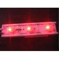 Wholesale Piranha LED Module from china suppliers