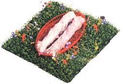 Quality salted hog casings for sale