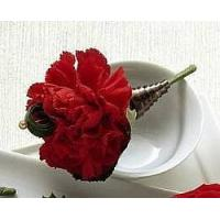 Wholesale View our full inventory The FTD Red Carnation Boutonniere from china suppliers