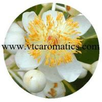 Wholesale Tamanu Essential Oil from china suppliers