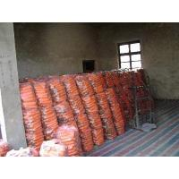 Wholesale CARROT from china suppliers