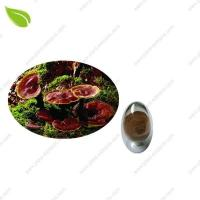 Ganoderma Extract >herbal extract