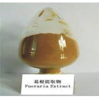 Wholesale Pueraria P.E. from china suppliers