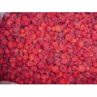 Buy cheap Frozen/IQF Raspberry from wholesalers