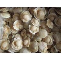 Buy cheap iqf raw scallop from wholesalers