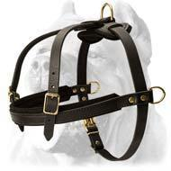 Buy cheap Tracking/Pulling/Agitation Leather Dog Harness For Cane Corso product