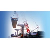 Wholesale Crawler Crane QUY260 from china suppliers