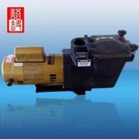 Wholesale SP Series Water Pump For Swimming Pool from china suppliers