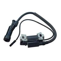 Wholesale Ignition Coil Assy GX160 from china suppliers