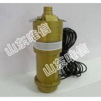 China 12V Portable Submersible Mini Water Pump on sale