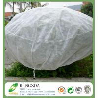 China Agricultural Use Polypropylene Non Woven Weed Control Fabric on sale