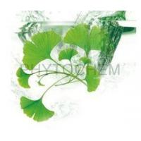 Wholesale Ginkgo Biloba Extract 24/6% USP from china suppliers